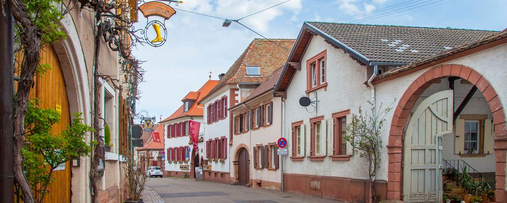Mandelbluete_Pfalz_4