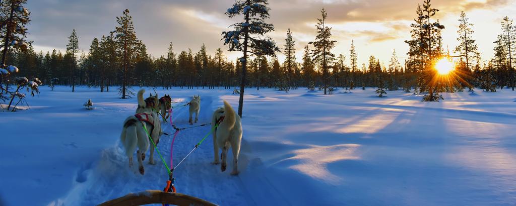 Lappland_3