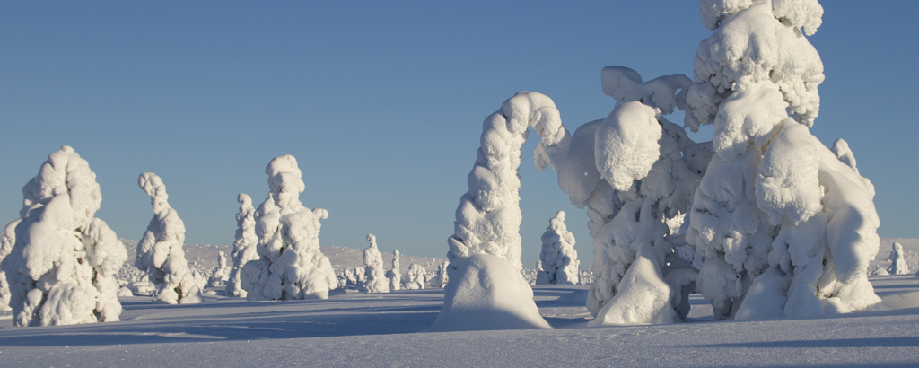Lappland_9
